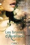 Les-brumes-d-Avallach